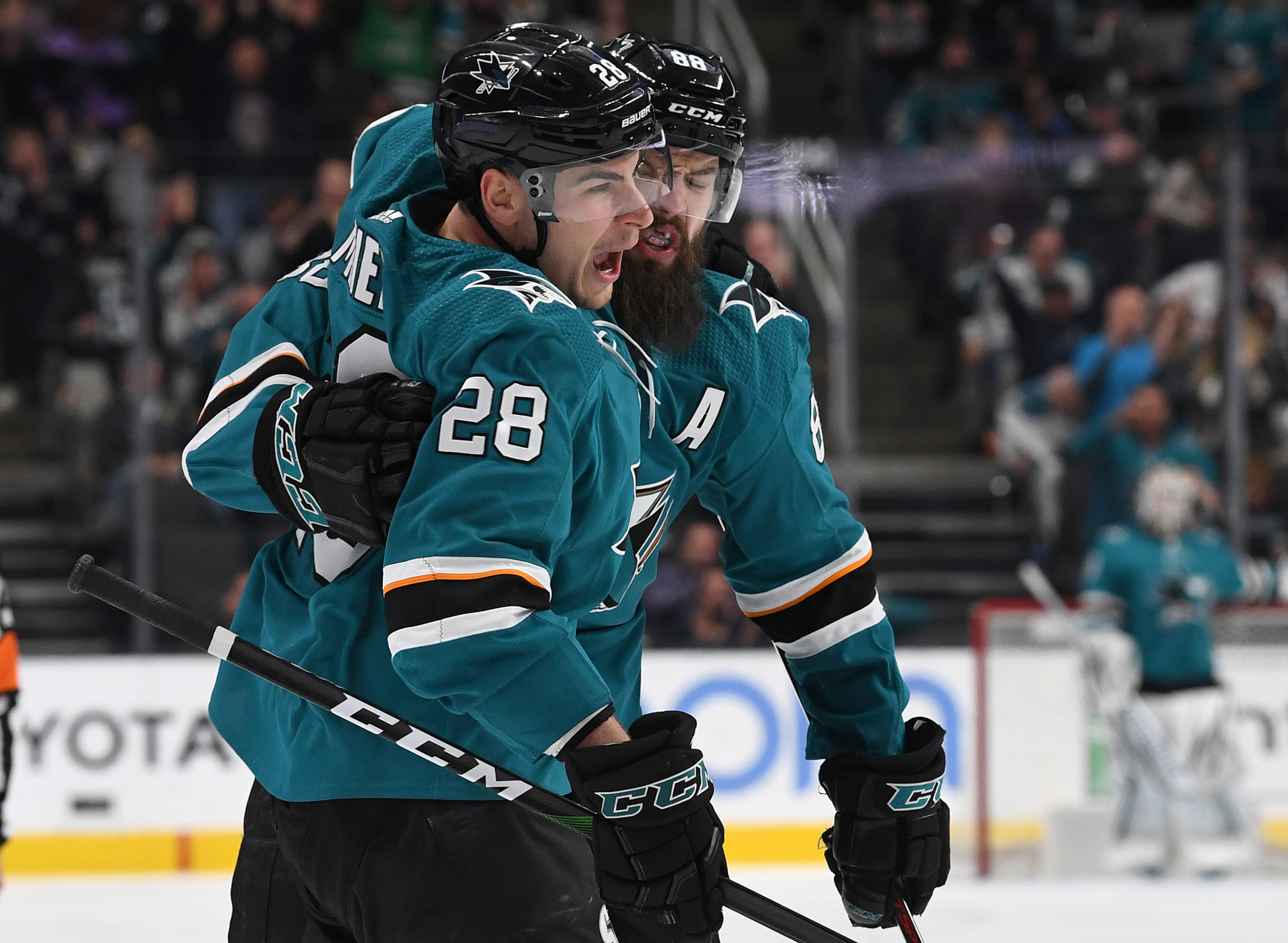 San Jose Sharks have a bright future in the face of a disappointing season